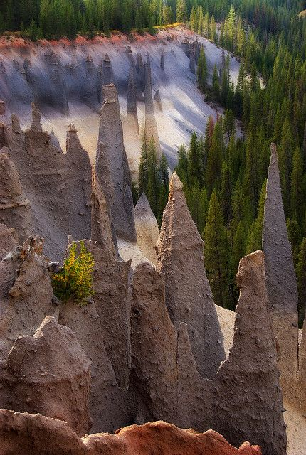 Pinnacles - Crater Lake NP, Oregon - These hollow 'pinnacles' were formed from hot volcanic steam bubbling up through a thick layer of ash. The heat solidified the ash and when it was washed away, these pillars were left.