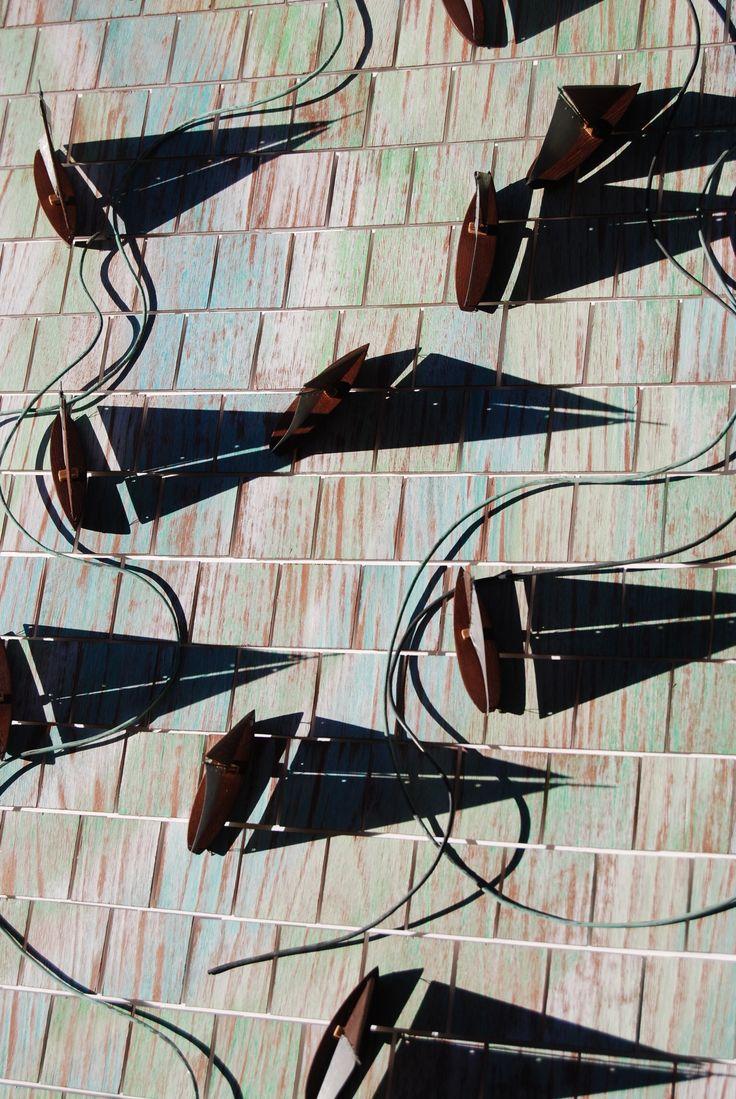Sailing shadows, By Diana Boyd