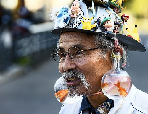 goldfish earingsBit, Gone Fish, Accidents Chine Hipster, Funny Things, 500386 Pixel, Fish Earrings, Bowls Earrings Hats, Fish Bowls, Goldfish