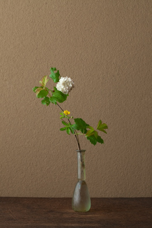 An art form I'd be delighted to learn more about: ikebana by Toshiro Kawase, Japan