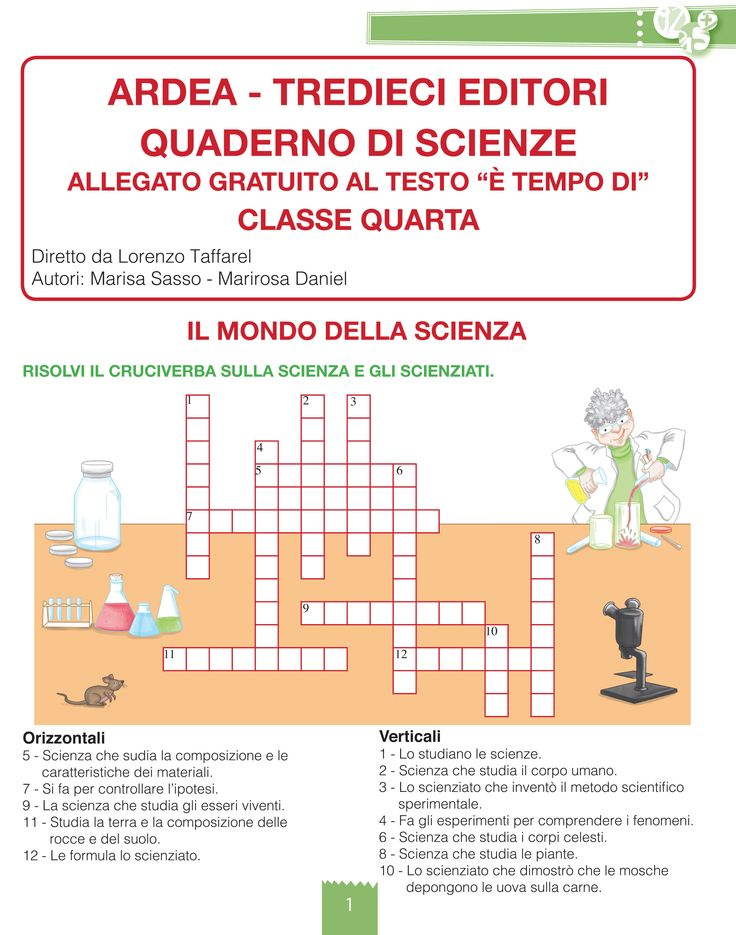 È tempo di... matematica / scienze / informatica 4: quaderno di scienze (novità 2015)