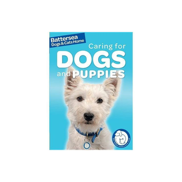 Battersea Dogs Cats Home Betreuung Von Hunden Und Welpen Battersea Dogs Cats Home Pet Care Guides