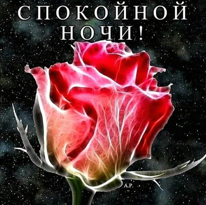 Спасибо такую, доброй ночи танечка открытки