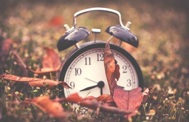 "Changing the clocks isn't the only important ""fall back"" task."