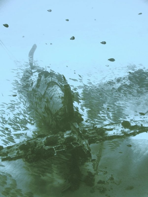 17 Best images about Underwater plane wrecks on Pinterest