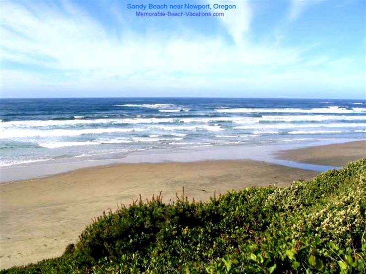 Beach House Newport Oregon Part - 50: Beach At Newport, OR.I Finally Saw And Touched The Water Of The Pacific  Ocean!