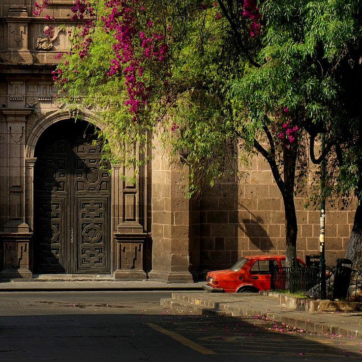 Camelinas en Las Rosas (corte) | Morelia Michoacán México 20… | Flickr