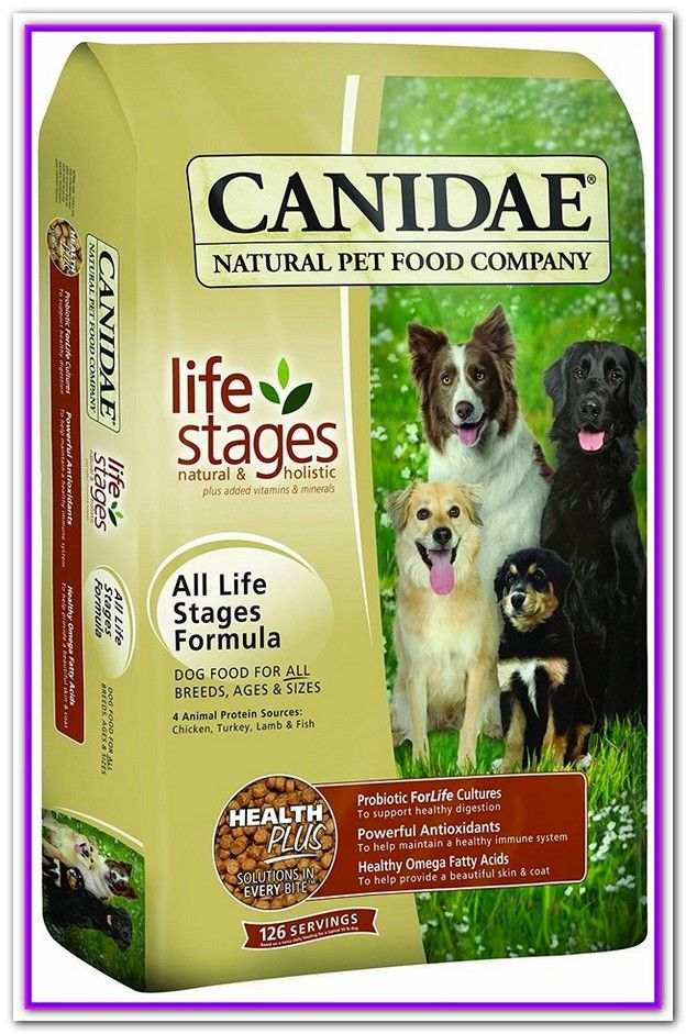 Best Place To Buy Dog Food Online Canada Healthy Dog Food Brands