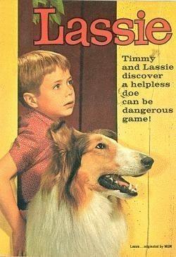 Lassie #70s #80s #childhoodmemories #nostalgia