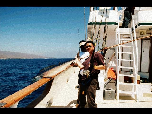 16 best images about long range fishing on pinterest for Royal polaris fishing