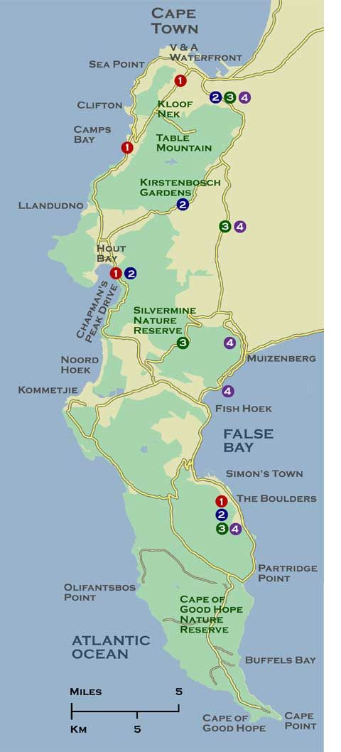 Cape Town beaches map