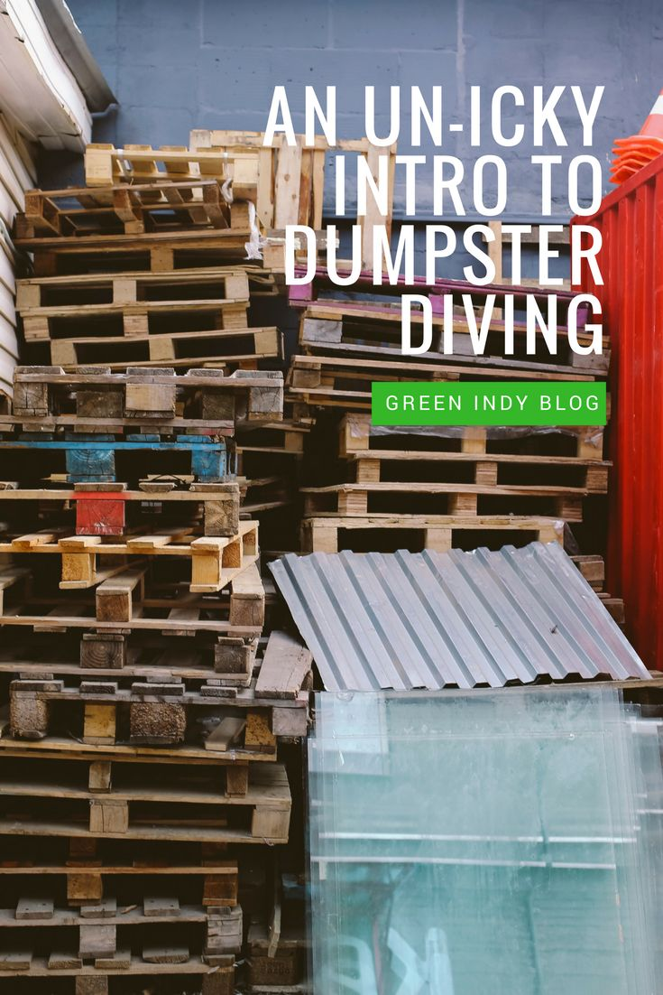 An introduction to dumpster diving: because we waste a lot of food/non-edible items and you should be enjoying them. For free!