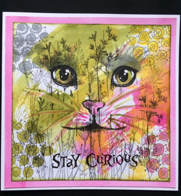 Leanne C Harris's Blog. A Brush With A Stamper.: Visible Image - Stay Curious............