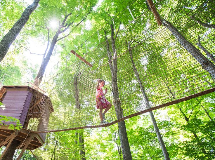 Treetop Trekking :: Treewalk Village