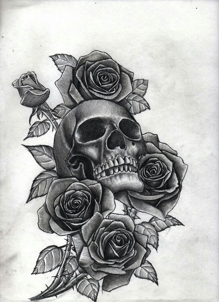 25 beautiful Skull roses tattoo ideas on Pinterest  Jias de