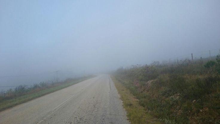 Misty morning run along R67 to Port Alfred from Grahamstown.