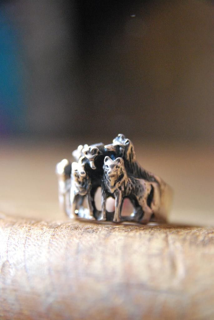My Eagle Scout Wolf Pack Ring