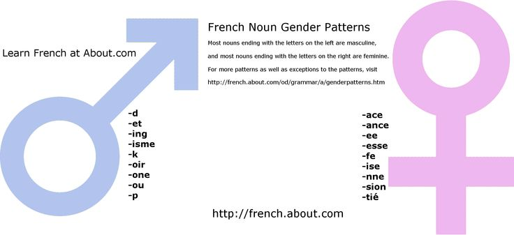 French Gender - Masculine and Feminine Endings of French Nouns