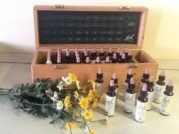 kit  38 fiori di Bach + Rescue Remedy