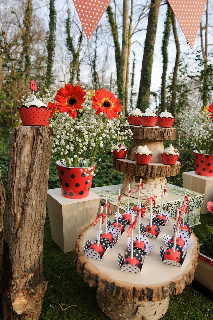 close-up-view-lady-bug-party #ladybugparty #ladybugpartyideas #viablossom #ladybugpartysupplies