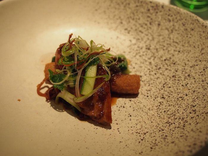 Chinese style duck breast, taro dumplings, Sichuan peppered yellow bean dressing, Asian herb salad