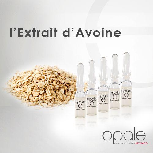 Les sucres 100% naturels, issus de l'extrait d'Avoine, agissent en profondeur pour remailler la peau tel un film invisible qui permet de retendre, remodeler et lisser la peau. Cet actif procure un effet tenseur immédiat pour une peau visiblement plus jeune. Retrouvez ses bénéfices dans les ampoules Éclat d'Opale.