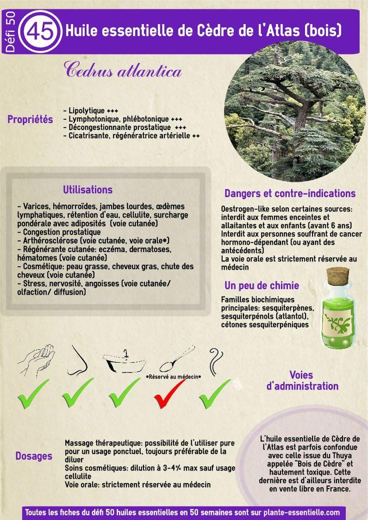 Réduire l'huile essentielle de Cedre à un soin pour cheveux gras? C'est passer à côté de toutes ses qualités. Cliquez ici pour profiter pleinement de cette huile essentielle.