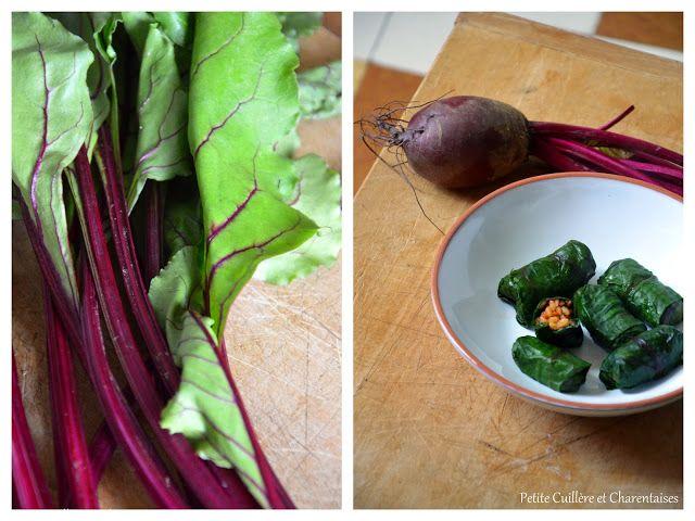 FEUILLES DE BETTERAVE FARCIES - Pour les amateurs de feuilles de vigne farcies, cette alternative est plus pratique que l'original (les feuilles de betterave sont plus faciles à rouler que les feuilles de vigne)