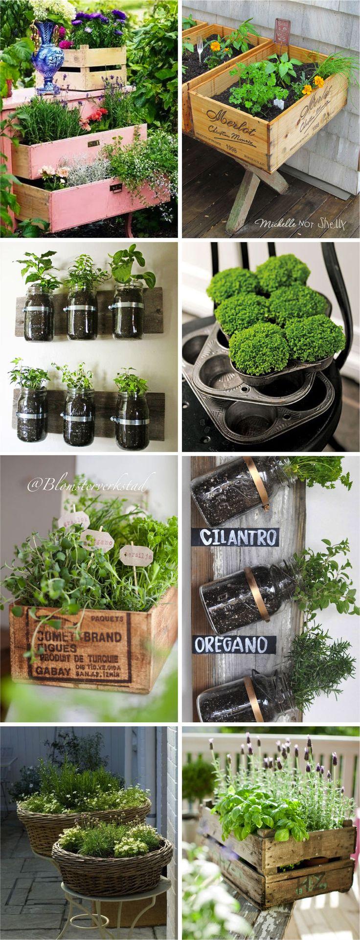 Acho muito fofo ter uma hortinha em casa, mas quem disse que precisamos de espaço? Olha quanta idéia fofa pra você plantar uma ervinha que seja num cantinho qualquer?! Da fôrma de cupcake a caixa de vinho, quem diria?!