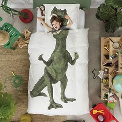 Best 25 Dinosaur Bedding Ideas On Pinterest Dinosaur