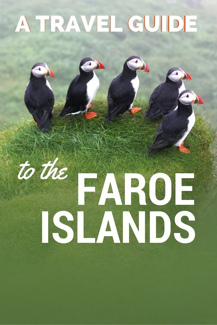 A Travel Guide to the Faroe Islands. Visiting here requires a decent amount of planning; if you rocked up expecting to walk straight into a hotel and land yourself a bed without booking in advance, there's a high chance you'll find yourself uncomfortably waking up with a flock of sheep.