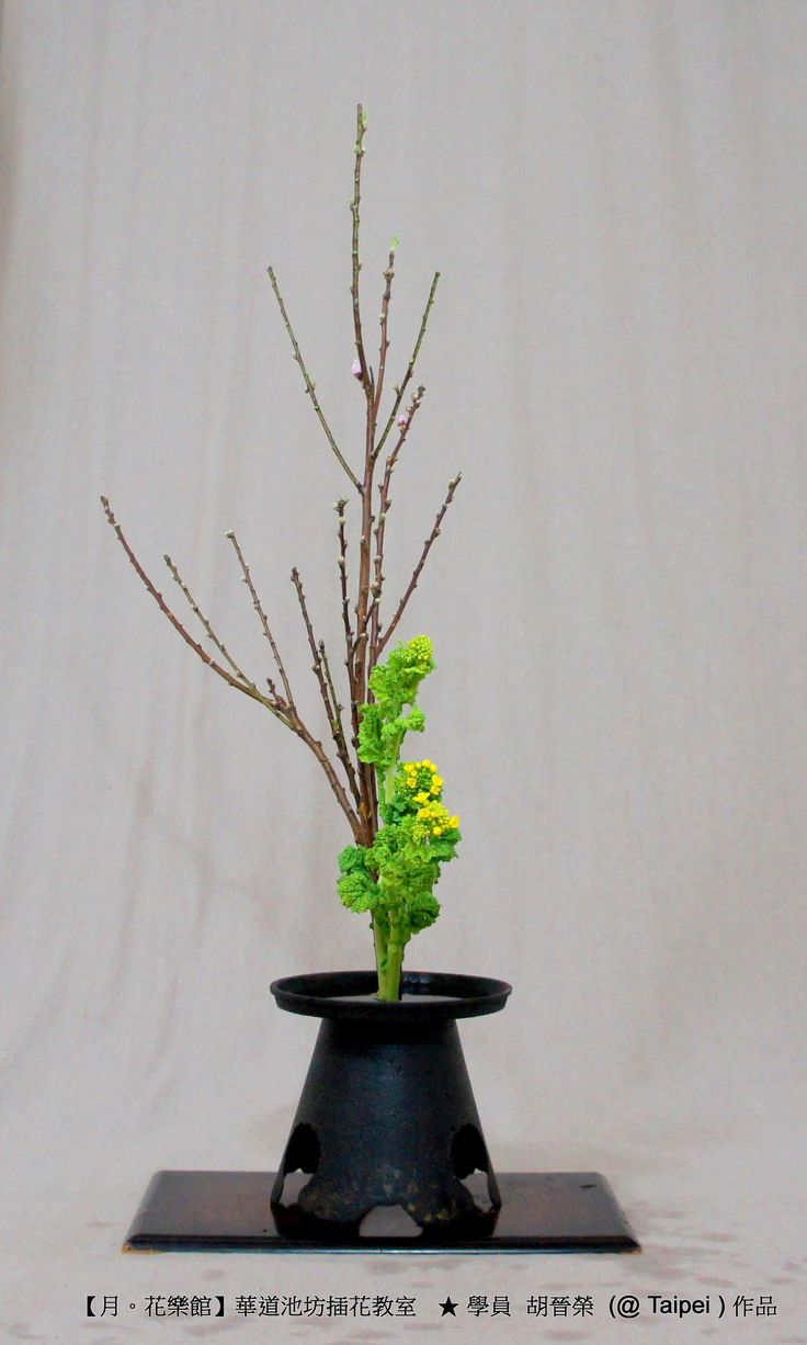3610 Best Images About Ikebana Amp High Style On Pinterest Floral Arrangements Florists And Ikebana