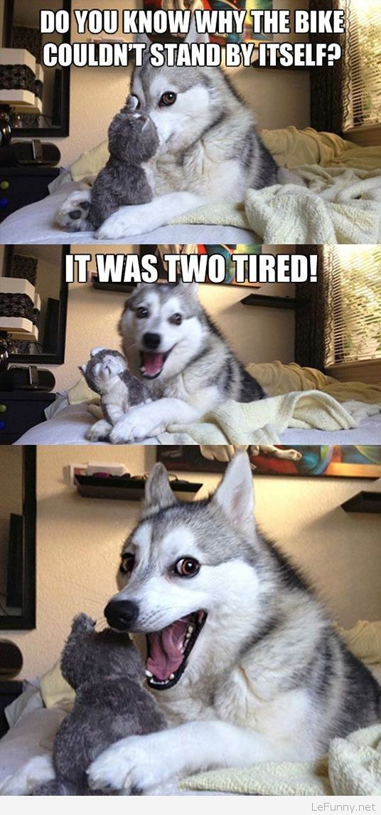 Funny dog joke | Funny Pictures | Funny Quotes | Funny Jokes – Photos, Images, Pics