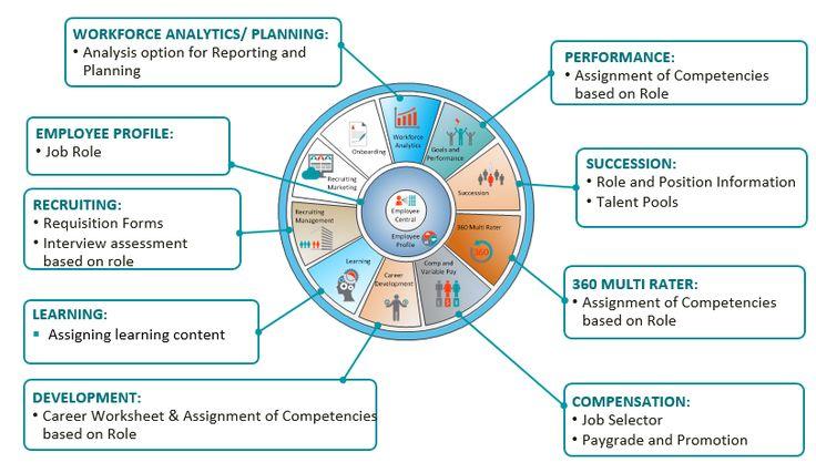 SAP SuccessFactors Platform Components u2013 Part 4 Job Profile - what is requisition