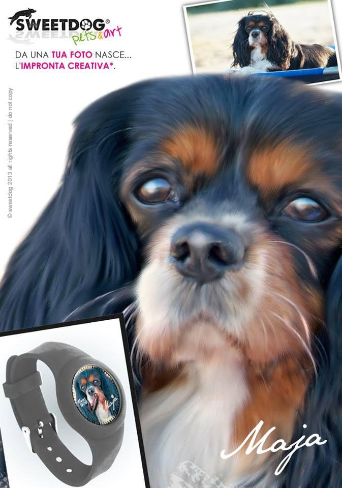 personalized watch with the edited photo of your dog | orologio personalizzato con la foto del tuo cane | cane: Cavalier King