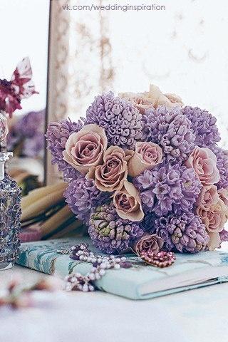 powder roses