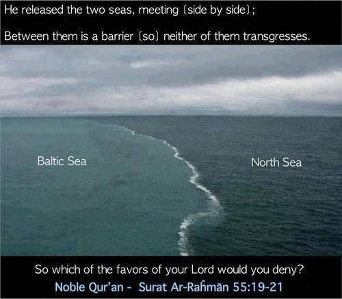 two oceans meet but do not mix snopes truth