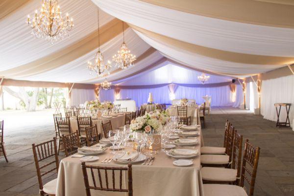 125 best lowndes grove plantation images on pinterest wedding blush cream charleston wedding junglespirit Image collections