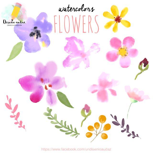 Diseño audaz: Clipart free Watercolors flowers png free