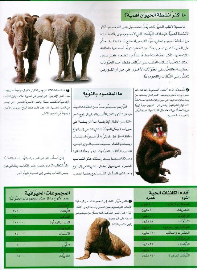 موسوعة سؤال وجواب عالم الطبيعة Pdf Books Books Walrus