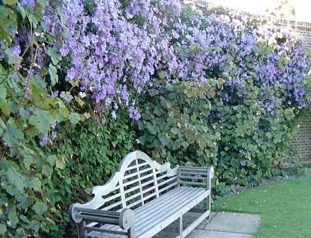 My favourite Lutyens bench