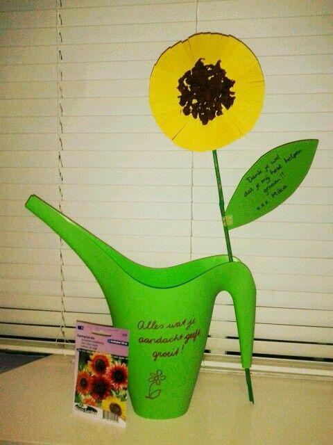 Alles wat je aandacht geeft, groeit. Dank je wel dat je mij hebt helpen groeien! Afscheid peuterspeelzaal, kinderopvang. Zonnebloem, gieter en zonnebloemzaadjes.