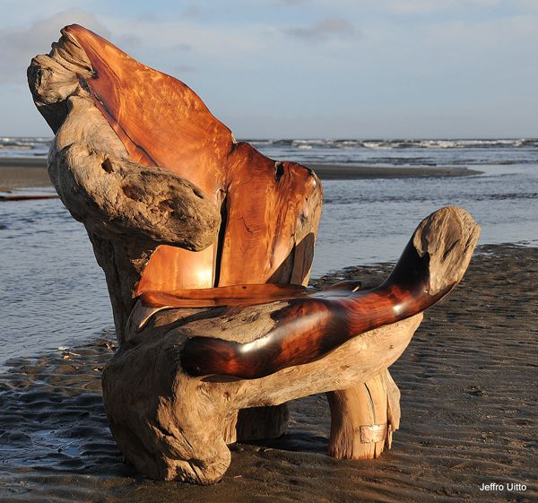 Knock on Wood || Gallery