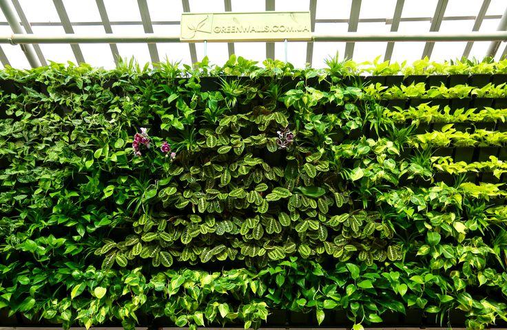 Шоу-рум в Ботаническом саду им. Гришка