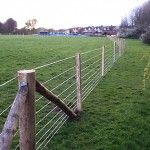 Agricultural Fencing, Wire Stock Fence. Temporary Wire Stock fencing for a new pipeline installation in Portsmouth.