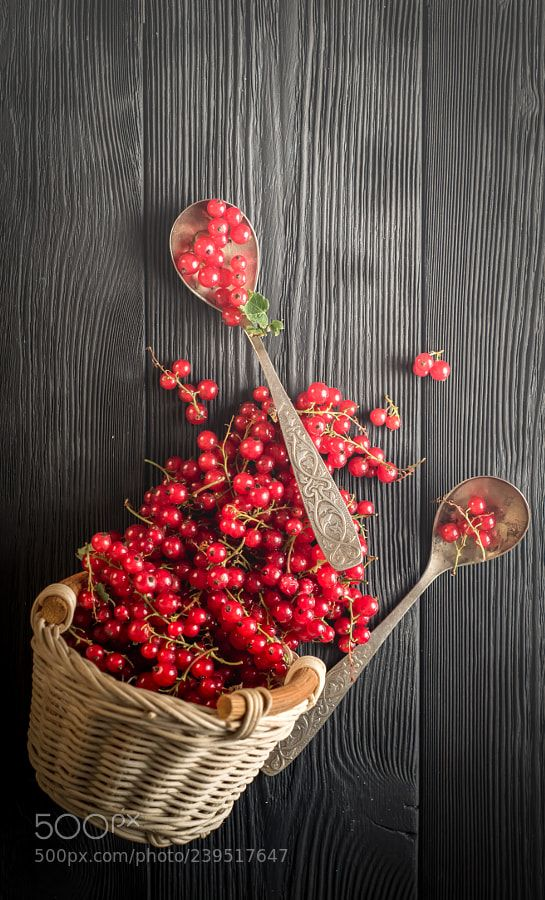 red currant berry on black wood boards by Aboltin_one