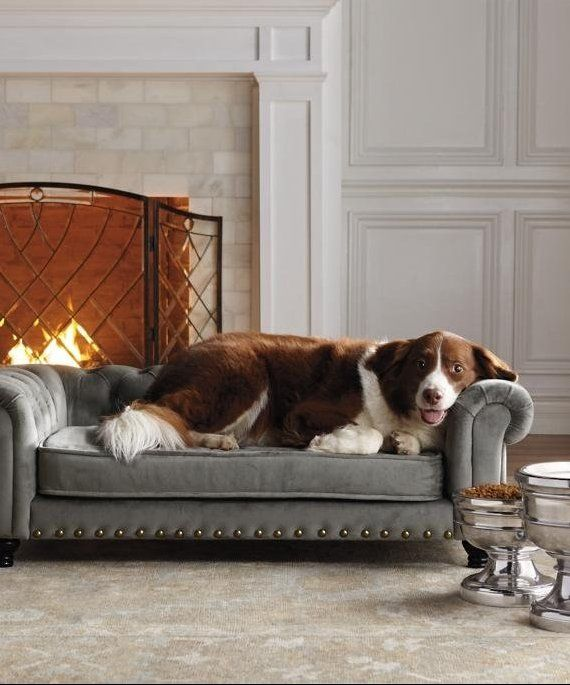 Wentworth Tufted Dog Sofa Frontgate Dog Sofa Comfy Couch Pet Bed Tufted Dog Bed