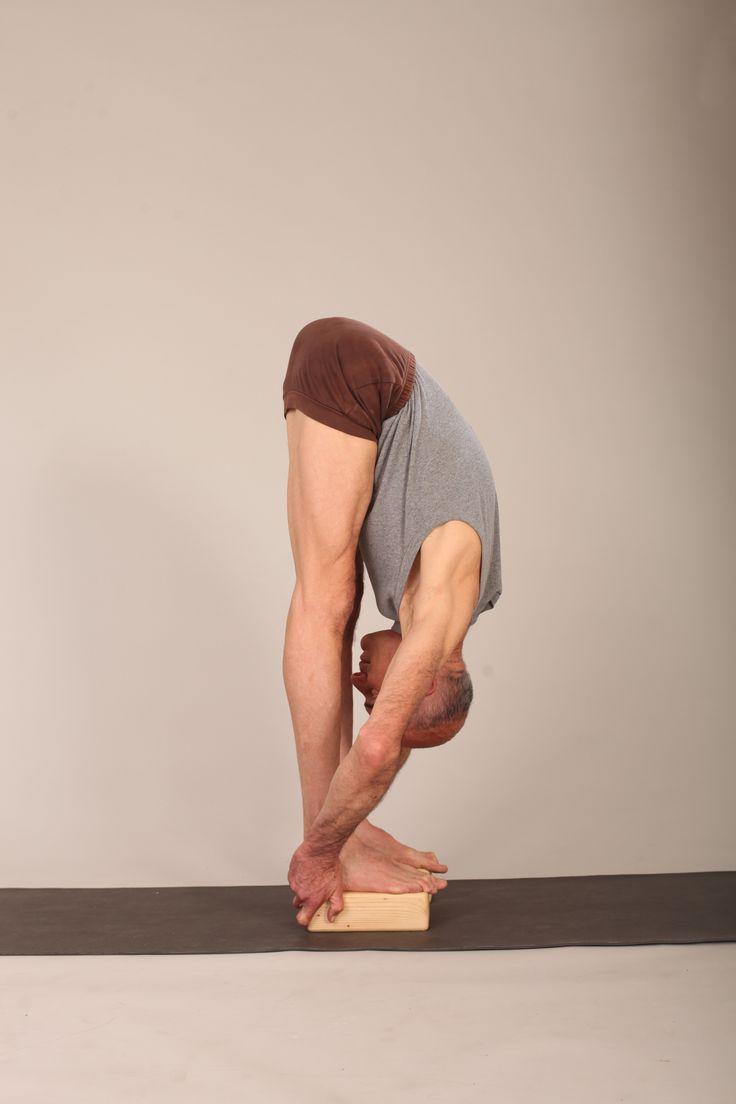 Beste Yoga Anatomie Werkstatt Zeitgenössisch - Anatomie Von ...