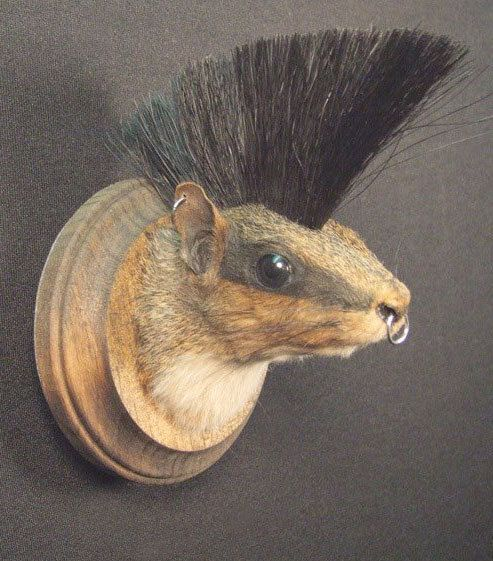 move over jackalope, a new taxidermy marvel has hit the market....punk squirrel