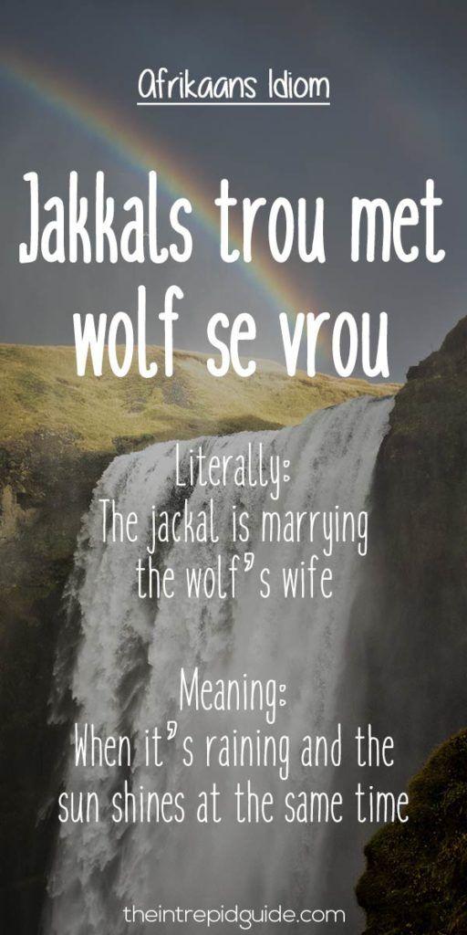 afrikaans expressions Jakkals trou met wolf se vrou